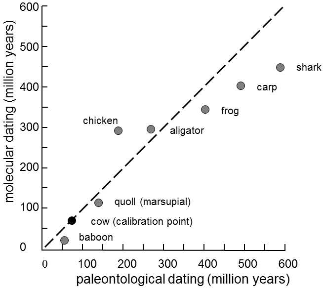 Mar 2013. All of the estimates hinge on one number: the gene mutation rates..